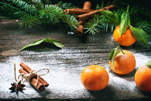 Bilder Zitrusfrüchte Mandarine Zimt Ast Lebensmittel
