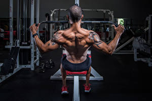 Pictures Bodybuilding Men Tattoos Human back Muscle Workout athletic