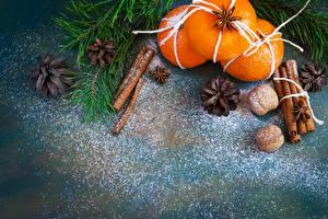 Bilder Neujahr Zitrusfrüchte Mandarine Zimt Schalenobst Ast Zapfen Lebensmittel