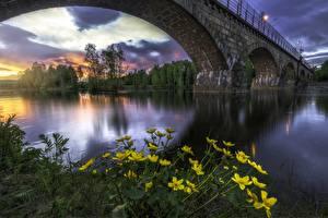 Picture Norway Bridges River Scenery Honefoss Ringerike Cities