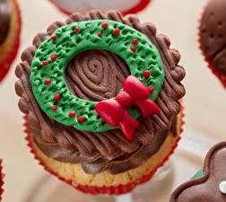 Bilder Süßigkeiten Törtchen Großansicht das Essen
