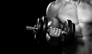 Image Fitness Man Dumbbells Hands dumbbell Sport