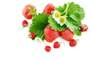 Fotos Hügel-Erdbeere Erdbeeren Beere Blatt das Essen