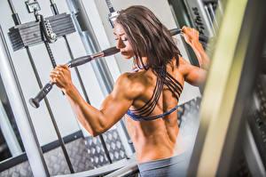 Fonds d'écran Bodybuilding Dos Activité physique workout bodybuilder gym sportives Filles