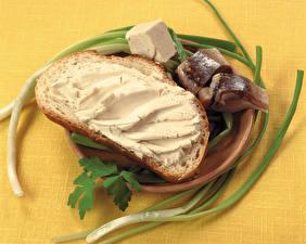 Fotos Butterbrot Brot Fische - Lebensmittel Zwiebel Das Essen