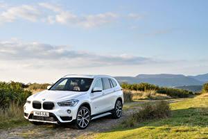 Image BMW Sky White Metallic 2015 BMW X1 25d xLine automobile