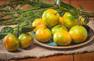 Hintergrundbilder Zitrusfrüchte Mandarine Ast Teller Lebensmittel