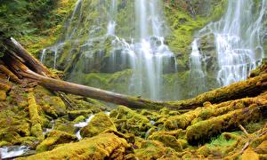 Hintergrundbilder Vereinigte Staaten Wasserfall HDR Laubmoose Alder Springs Oregon Natur