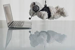 Image Toys Teddy bear Laptops Headphones Humor