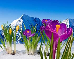 Hintergrundbilder Gebirge Natur