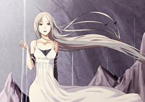Tapety na pulpit Pixiv Fantasia Wlosy Sukienka Fan ART Fallen Kings Rane Anime Dziewczyny