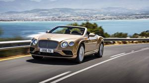 Image Bentley Convertible Expensive Motion 2015 Continental GTC auto