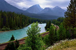 Image Canada Park River Mountain Forest Railroads Landscape photography Banff Trees Bow river Nature