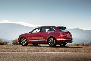 Hintergrundbilder Bentley Dunkelrote Metallisch Seitlich 2015 Bentayga auto