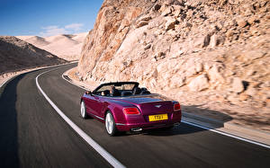 Images Roads Bentley Motion Convertible Continental GT automobile