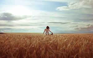 Bilder Felder Himmel Ähren Natur Mädchens