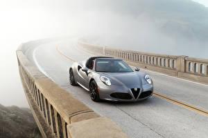 Wallpaper Alfa Romeo Roads Silver color Convertible Fog 2016 Alfa Romeo 4C Spider Cars