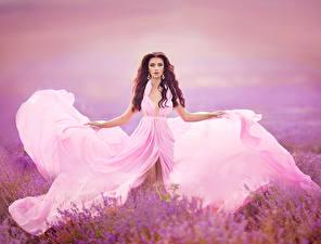 Hintergrundbilder Lavendel Braune Haare Kleid Mädchens
