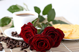 Pictures Roses Coffee Three 3 Wine color Grain Flowers