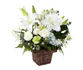 Bilder Blumensträuße Rose Nelken Lilien Chrysanthemen Weidenkorb Weiß Weißer hintergrund Blumen
