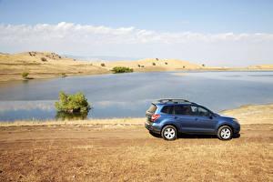 Fotos Subaru Küste Hellblau Seitlich 2016 Forester automobil