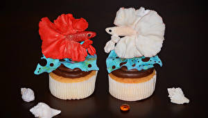 Wallpapers Sweets Little cakes Fish Two Design Food