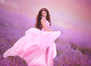 Hintergrundbilder Lavendel Braune Haare Kleid junge frau