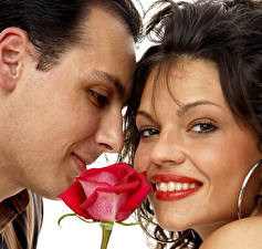 Pictures Man Roses Love Valentine's Day Couples in love Brown haired Two Face Girls