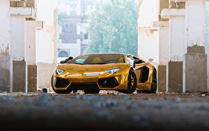 Fotos Lamborghini Gold Farbe Luxus Vorne Roadster Aventador Roadster Autos