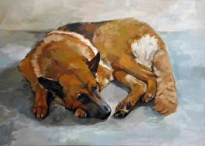 Bilder Hunde Gezeichnet Shepherd