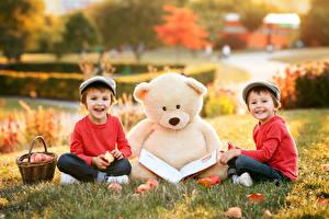 Image Teddy bear Toys Boys 2 Grass Wicker basket Books child