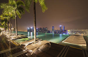 Wallpaper Singapore Sunlounger Night Palm trees Pools Cities