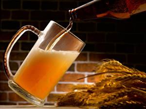 Hintergrundbilder Getränke Bier Ähre Becher das Essen
