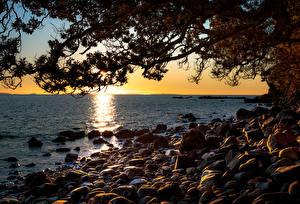 Bilder Neuseeland Sonnenaufgänge und Sonnenuntergänge Steine Meer Ast Ruamahunga Bay Natur