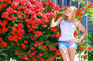 Bilder Rose Alessandra A Blond Mädchen Strauch Shorts junge Frauen