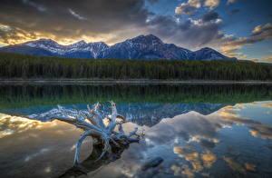 Hintergrundbilder Gebirge Küste Wälder Landschaftsfotografie See Park Kanada Jasper park Patricia Lake Natur