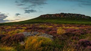 Fotos Vereinigtes Königreich Park Lavendel Steine Peak District National Park Natur