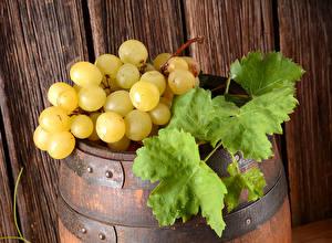 Bilder Obst Weintraube Großansicht Blatt Lebensmittel
