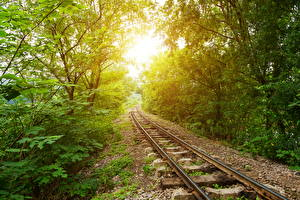 Pictures Railroads Trees Rays of light Nature