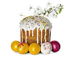 Fotos Feiertage Ostern Backware Ei Ast Lebensmittel