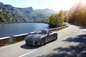 Hintergrundbilder Jaguar Straße Grau Cabrio Geschwindigkeit 2016 F-Type SVR convertible Autos