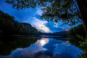 Hintergrundbilder Deutschland Landschaftsfotografie Flusse Wälder Himmel Mainz Nacht Ast Natur