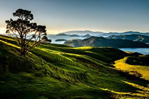 Images New Zealand Scenery Mountains Lake Trees Coromandel Nature