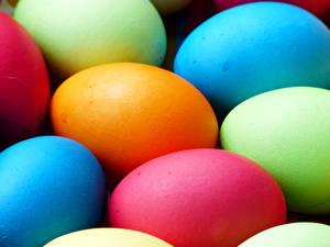 Bilder Feiertage Ostern Großansicht Ei