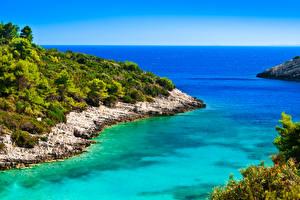 Picture Croatia Coast Sea Shrubs Nature