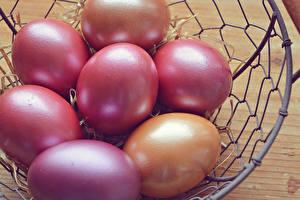 Fotos Feiertage Ostern Großansicht Ei