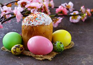 Fotos Feiertage Ostern Kulitsch Backware Ei Ast Lebensmittel