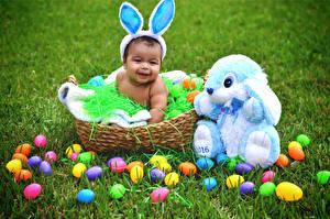 Picture Rabbit Easter Baby Wicker basket Egg Grass Children