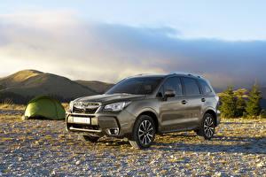 Fotos Subaru Metallisch 2016 Forester 2.0XT