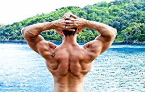 Wallpaper Men Bodybuilding Human back Muscle